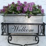 bloeiende viooltjes heten je welkom bij buitengoed de gaard pipowagen- en vakantieverblijf
