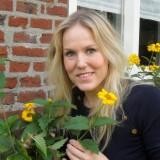 hadewych minis rett-zonnebloemen-mini's bij buitengoed de gaard