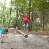 kinderen in het bos foto vvv midden-limburg