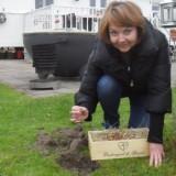 melise de winter plant paarse crocus-bolletjes bij de mammaloewagen buitengoed de gaard