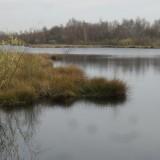 nationaal park groote peel ospel limburg