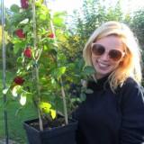 roos van erkel 'het meisje met het rode haar' plant een rode rett roos bij buitengoed de gaard