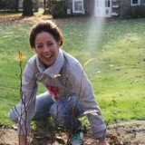 -suzan seegers plant magnolia bij buitengoed de gaard