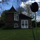 zwarte tulp geplant door huub stapel in bloembak bij vierseizoenenhuisje buitengoed de gaard