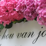 40 jaar getrouwd rosalien en frans buitengoed de gaard 'honeymoon'