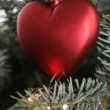 just married kerstboom buitengoed de gaard