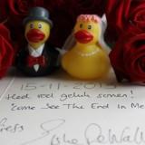 bruidsnacht 15-11-2013 met felcitatie voor bruidspaar van elske dewall