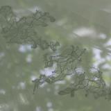 detail trouwjurk ilona wittebroodsweek in het vierseizoenenhuisje buitengoed de gaard