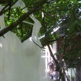 trouwjurk ilona die met martijn honeymoon vierde in het vierseizoenenhuisje buitengoed de gaard
