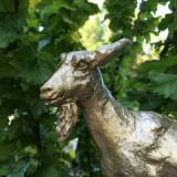 gouden geit bij gouden iep georgina verbaan bij buitengoed de gaard